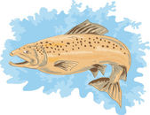 Truite poisson sautant — Vecteur