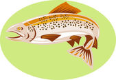 Trout fish jumping — Stock Vector
