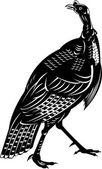 Wild turkey — Stock Vector