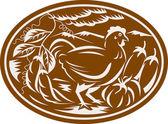 Retro de abóbora berinjela galinha frango feijão — Vetorial Stock