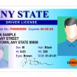 Generic male state driver license — Stockfoto