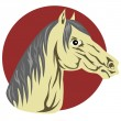 Horse Head — Stock Vector