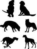 Canine Silhouettes — Stock Vector