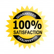 100 percent  Satisfaction Guaranteed  — Stockfoto