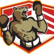Angry Bear Boxer Boxing Retro — Stock Vector