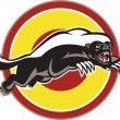 Honey Badger Mascot Leaping Circle — Stock Vector