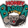 Honey Badger Mascot Front — Stock Vector