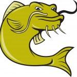 Angry Cartoon Catfish Fish — Stock Vector #33203323