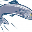 Angry Sardine Fish Jumping — Stock Vector