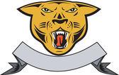 Puma Big Cat Growl Head Isolated — Stock Vector