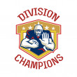 AmericFootball Division Champions Shield — Stock Photo #39480881