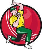 クリケットの速球投手のボーリング ボール側 — ストックベクタ