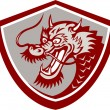 Chinese Red Dragon Head Shield — Stock Vector #42628905