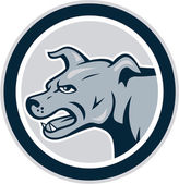 Mastiff Dog Mongrel Head Side Circle — Stock Vector