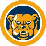 Bulldog Mongrel Dog Head Circle — Stock Vector #45764913