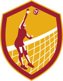 Volleyball Player Spike Ball Net Retro Shield — Stock Vector