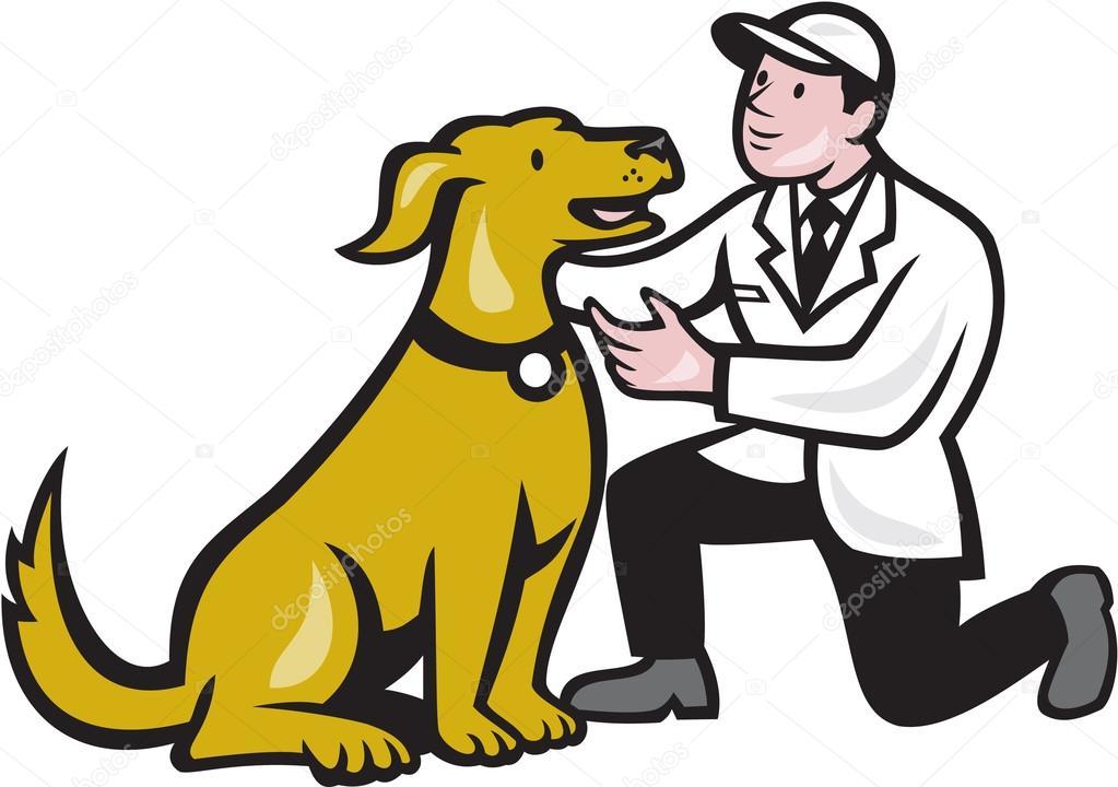Veterinaria Veterinario Arrodillado Con Perro Mascota De