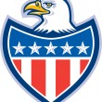 American Bald Eagle Flag Shield Retro — Stock Vector