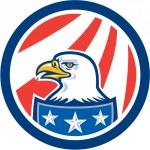 American Bald Eagle Head Flag Circle Retro — Stock Vector