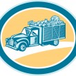 Vintage Pickup Truck Delivery Harvest Retro — Stock Vector #49017083