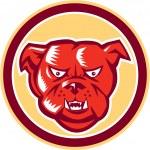 Angry Bulldog Mongrel Head Circle Retro — Stock Vector #50837013