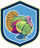Wild Turkey Side View Shield Retro — Stock Vector