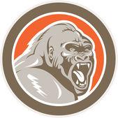 Angry Gorilla Head Circle Retro — Stock Vector