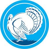 Wild Turkey Side View Circle Retro — Stockvector