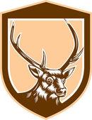 Deer Stag Buck Head Woodcut Shield — Stock Vector