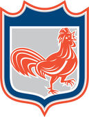 Chicken Rooster Leg Up Walking Shield Retro — Stockvector