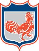 Chicken Rooster Leg Up Walking Shield Retro — Stock Vector