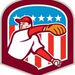 Постер, плакат: American Baseball Pitcher Throw Ball Shield Cartoon