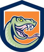 Rattle Snake Head Shield Cartoon — Stock Vector