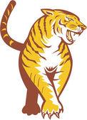 Tiger Prowling Retro — Stock Vector