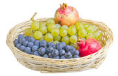 Fruits — Stock Photo