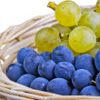 Grape - Stock Photo