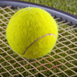 Tennis ball — Foto de Stock