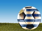 Uruguay football — Stock Photo