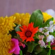 Flowers — Stock Photo #30668359