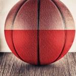 Poland basketball — Stock Photo #30869457
