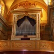 Organ — Stock Photo
