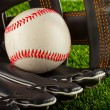 Ball and glove — Stock Photo #33074305