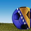 Bosnia Herzegovina football — Stock Photo