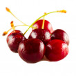 Foto de Stock  : Cherries