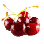 Třešně a višně — Stock fotografie