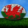 Wales Rugby — Stock Photo
