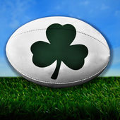 Ireland Rugby — Stock Photo