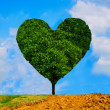 Heart shaped tree — Stock Photo