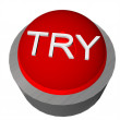 Try button — Stock Photo