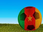 Cameroon football — Stock Photo